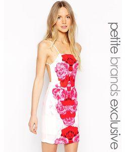 Tiger Mist Petite | Платье Мини С Бретельками На Спине Red Bloom