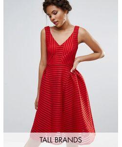 STUDIO . 75 | Приталенное Платье Tall Красный