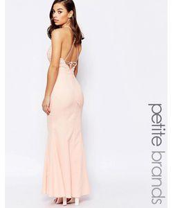 Jarlo Petite | Платье С Высокой Горловиной Кружевом И Завязкой Сзади