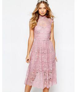 Body Frock | Кружевное Платье С Цветочным Узором Wedding Дымчатая Роза