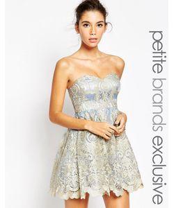 Chi Chi Petite   Кружевное Платье Для Выпускного С Лифом-Бандо И Вышивкой Chi Chi Londo