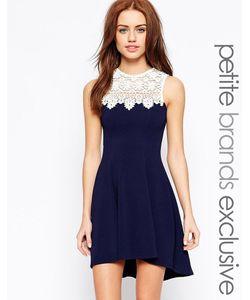 Lipstick Boutique Petite | Короткое Приталенное Платье С Отделкой Кроше