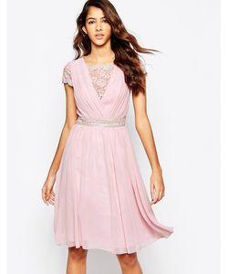 Laced In Love | Приталенное Платье С Кружевным Верхом