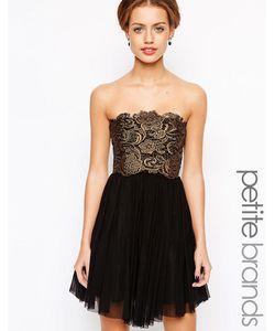 Lipstick Boutique Petite | Платье Для Вечеринок С Кружевом