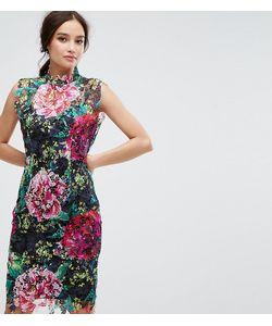Paper Dolls | Кружевное Платье-Футляр С Высоким Воротом