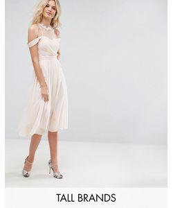 Little Mistress Tall   Платье Миди С Открытыми Плечами Плиссированным Лифом И Кружевной Аппликацией Little