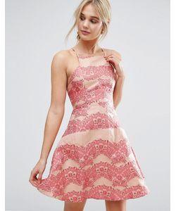 True Decadence | Платье Мини С Кружевной Отделкой И Расклешенной Юбкой