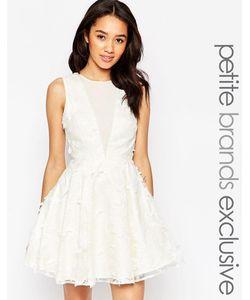 Chi Chi Petite   Платье Мини С Цветочной Отделкой Chi Chi London Petite