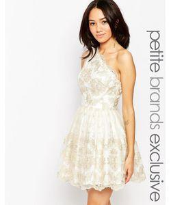 Chi Chi Petite   Кружевное Платье Для Выпускного На Одно Плечо Chi Chi London Petite
