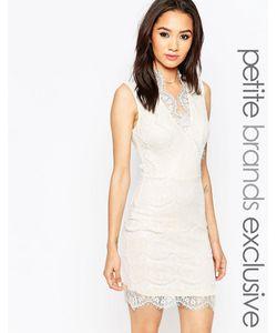 Lipstick Boutique Petite | Кружевное Облегающее Платье С Глубоким Вырезом