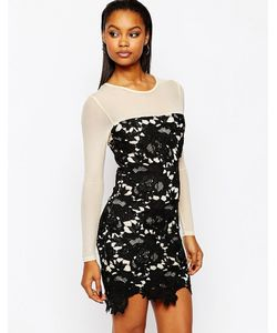 boohoo | Облегающее Платье С Кружевной Отделкой Черный