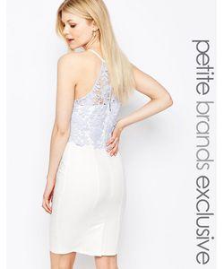 Paper Dolls Petite | Платье-Футляр С Кружевным Лифом И Халтером Белый