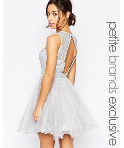 Chi Chi Petite | Кружевное Платье Для Выпускного С Фигурной Отделкой На Открытой Спинке Chi