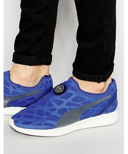 Puma | Кроссовки Ignite Синий