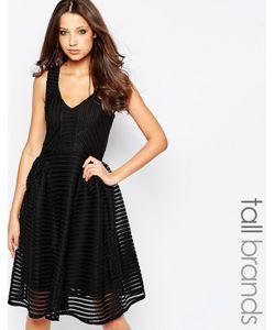 STUDIO . 75 | Приталенное Платье Tall Черный
