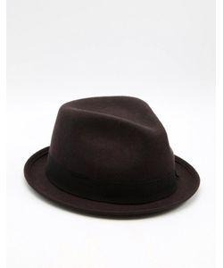 Catarzi | Шляпа С Круглой Плоской Тульей Коричневый