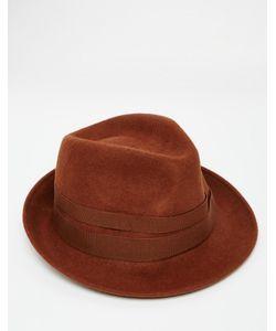 Catarzi | Шляпа Коричневый