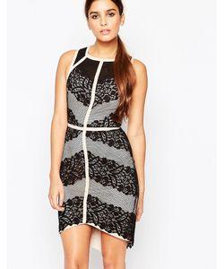 Adelyn Rae | Кружевное Платье Со Вставками