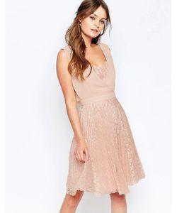 Elise Ryan | Плиссированное Короткое Платье С Кружевной Юбкой Розовый