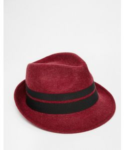 Catarzi | Шляпа Красный