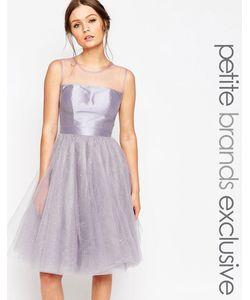 Chi Chi Petite   Платье Для Выпускного Из Тюля Chi Chi London Petite