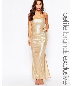 Lipstick Boutique Petite | Расшитое Пайетками Длинное Платье Бандо