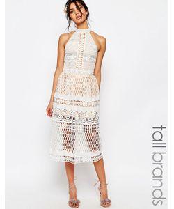 Jarlo Tall | Кружевное Приталенное Платье Миди С Высокой Горловиной Белый