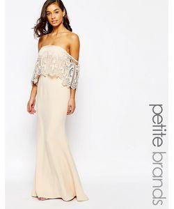 Jarlo Petite | Кружевное Платье С Открытыми Плечами Blush