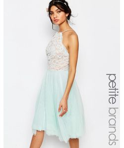 Jarlo Petite | Короткое Приталенное Платье С Кружевным Топом И Юбкой Из Тюля Jarlo