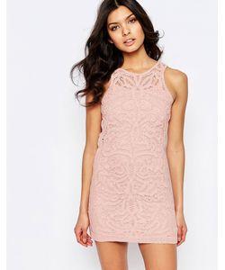 Foxiedox | Кружевное Платье Мини Monticello Розовый
