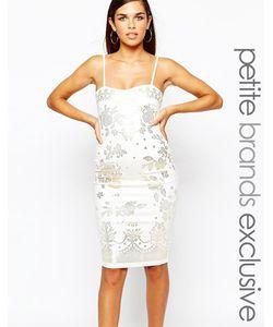 Lipstick Boutique Petite | Облегающее Платье С Отделкой