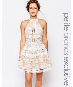 Jarlo Petite | Платье Для Выпускного С Ажурной Отделкой И Высоким Воротом