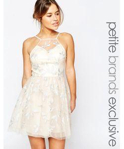Chi Chi Petite | Платье Для Выпускного С Халтером И Вышивкой Chi Chi London Petite