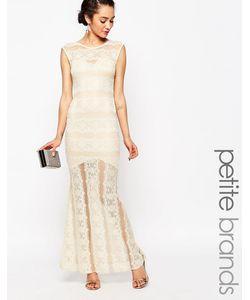 Lipstick Boutique Petite | Кружевное Платье Макси Кремовый