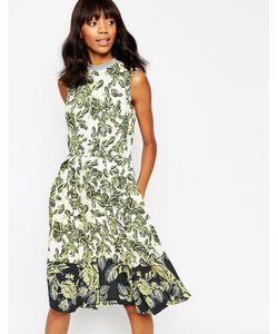 ASOS Africa | Платье Миди С Оборкой По Кромке