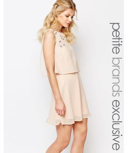 True Decadence Petite | Короткое Приталенное Платье 2-В-1 С Отделкой