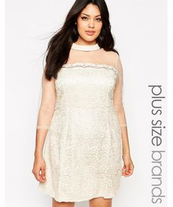 Little Mistress Plus | Цельнокройное Платье С Прозрачными Рукавами
