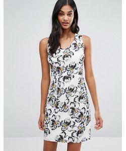 Poppy Lux   Цельнокройное Платье С Пальмовым Принтом Capri
