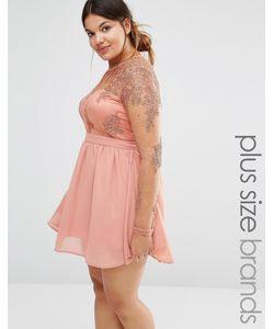 Missguided Plus | Короткое Приталенное Платье С Кружевом Blush