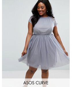 ASOS CURVE | Платье Мини Для Выпускного Из Кружева И Тюля Premium