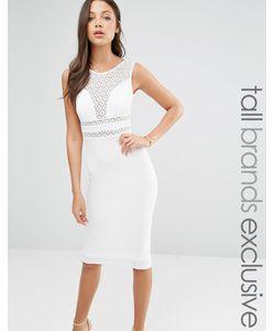 TFNC Tall | Платье-Футляр С Кружевной Вставкой Белый