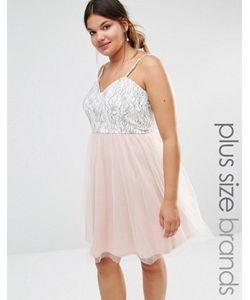 Boohoo Plus | Платье Для Выпускного Из Кружева И Тюля