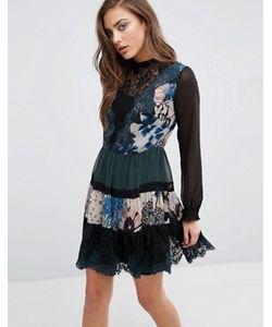 Miss Selfridge | Комбинированное Платье Мини С Принтом И Кружевом