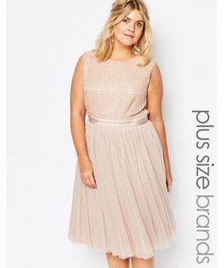 Lovedrobe Luxe | Платье Миди С Декоративной Отделкой И Тюлевой Юбкой
