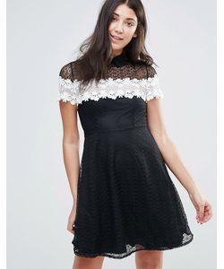 Jessica Wright | Черно-Белое Короткое Приталенное Кружевное Платье
