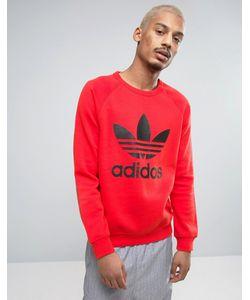 adidas Originals   Свитшот С Круглым Вырезом И Логотипом-Трилистником Bk5868