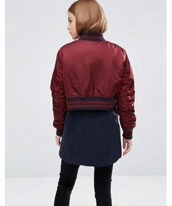 Asos | Хлопковая Куртка Со Спинкой В Стиле Курткипилот