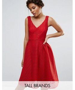 STUDIO . 75 | Приталенное Платье Tall