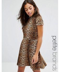 Glamorous Petite | Короткое Приталенное Платье С Леопардовым Принтом