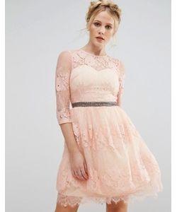 Little Mistress | Кружевное Платье С Отделкой На Поясе